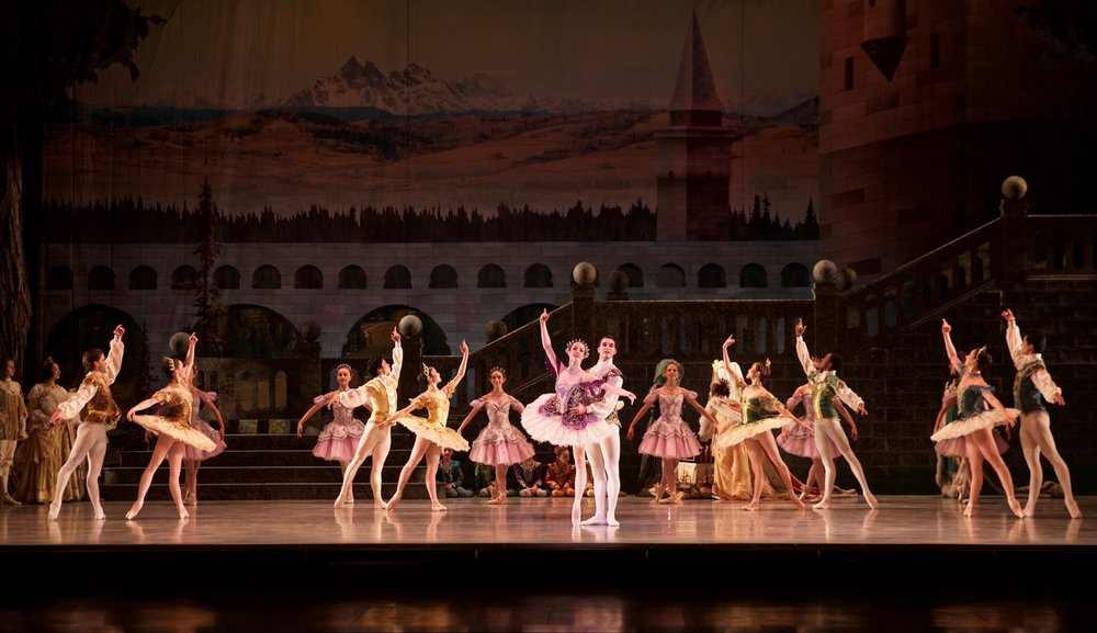 The Sleeping Beauty  marks the debut of the 2018/19 company dancers!
