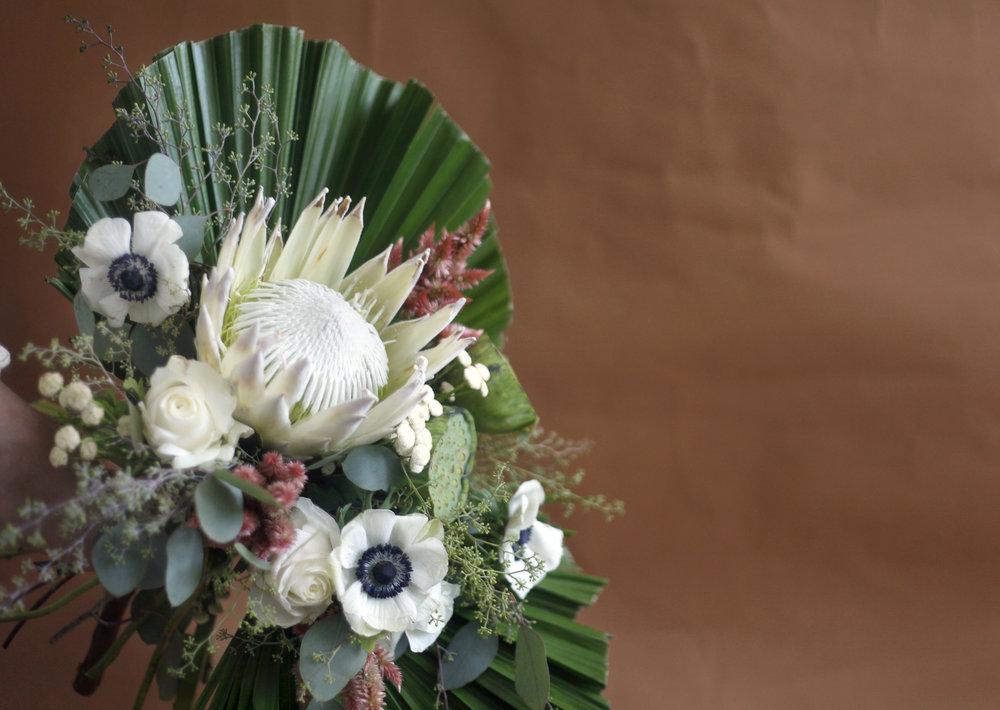 Large Protea