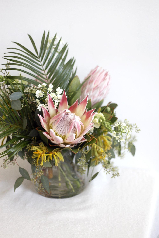 Medium Protea