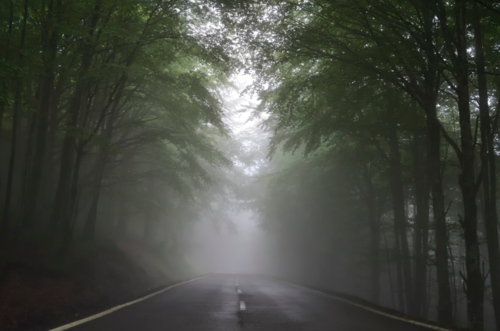 This is not the first time we have come upon a foggy path. We've been down this road before and can adjust to navigate.