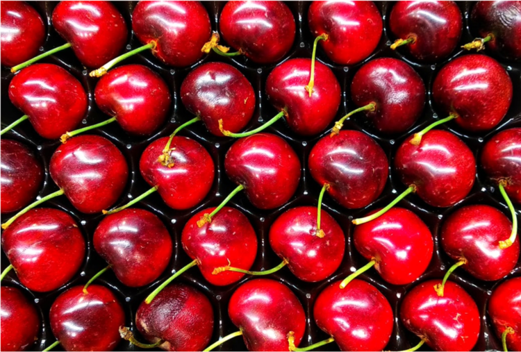 How Does Cancelling the National Cherry Festival Affect the Traverse City Housing Market? Brick and Corbett BLOG