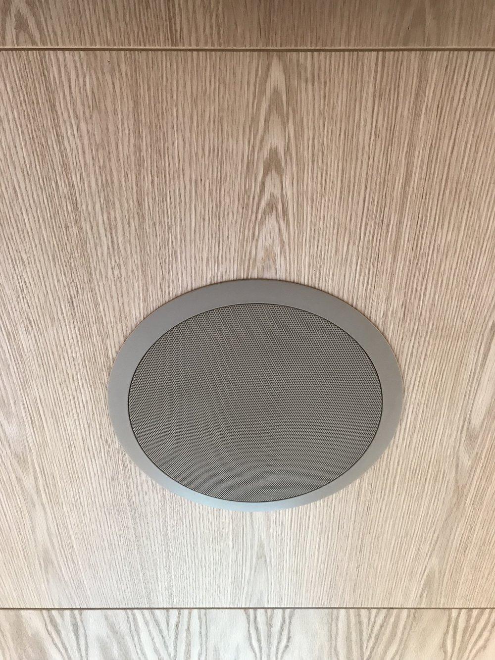 Custom Painted Ceiling Speakers
