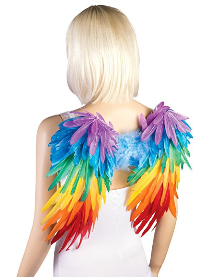 Rainbow feather wings. $41.72