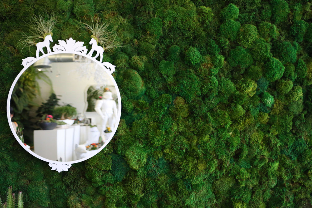 PlantTheFuture_Miami_Wynwood2.jpg
