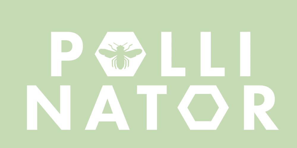 What's the latest buzz? - Pollinator 18 + Design Week is over...but stay tuned for our next iteration!