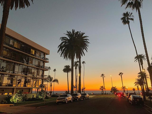 Sunsets in SaMo are the best! #sunset #santamonica #la #palmtrees