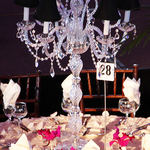 friends-of-prentice-gala-led-lighting-productions-rentals-events-rgb-lighting-10twelve.JPG
