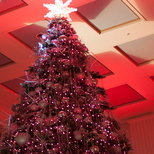 macy's-christmas-tree-100mm-flexiflex-strips-flexible-led-lighting-rgb-10twelve.JPG