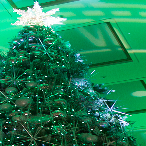 macy's-christmas-tree-full-motion-videp-horitculture-philips-color-kinetics-rgb-lighting-10twelve.JPG