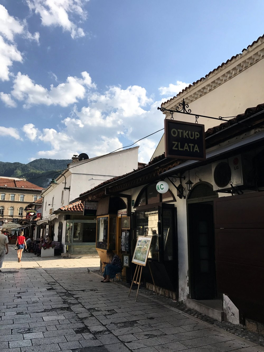 Fun fact: Sarajevo has the world's oldest public restroom, dating back to 1530.
