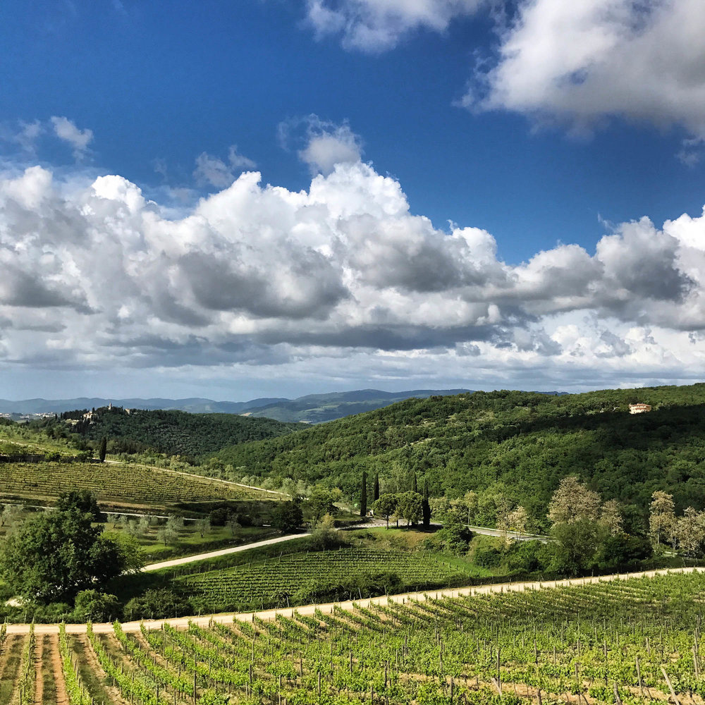 Go to a Chianti tasting at Familia Mazzarrini. It's an easy day trip from Florence and if you don't want to drive, you can take a bus tour here. ❤️ Chianti and pecorino 🍷 🧀