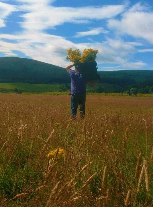 Working the fields in Aberdeenshire.