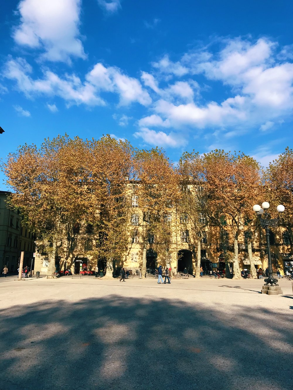 Piazza Napoleone. In 1997 this was a car park, but now it's one of the best open squares in Lucca and you'll find live music and other activities here in summer. Unseen, is   Palazzo Ducale  , which houses a lot of government offices, but also a museum.