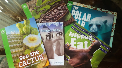 Books pictured:  See the Cactus Penguin Baby Hippos Eat The Polar Bear The Chocolate Tree
