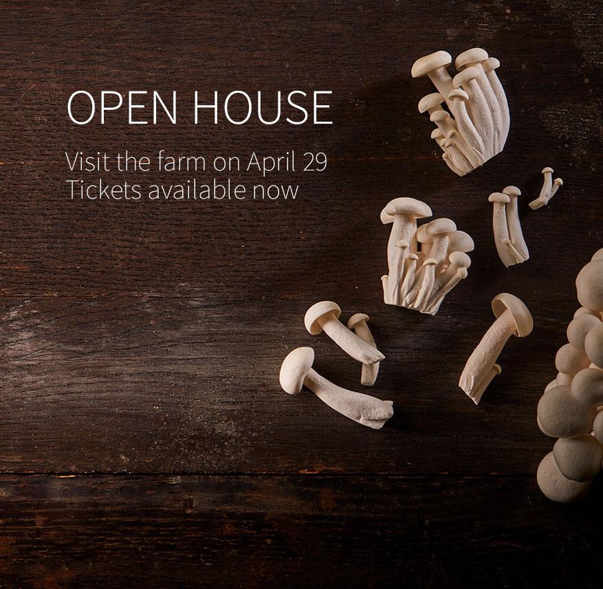 2018-open-house.jpg