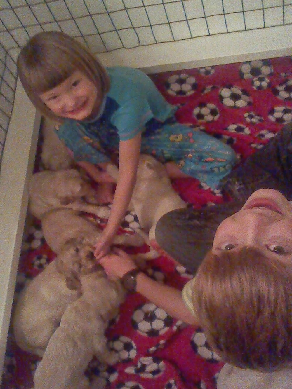 Elijah and Sadie providing socialization skills -