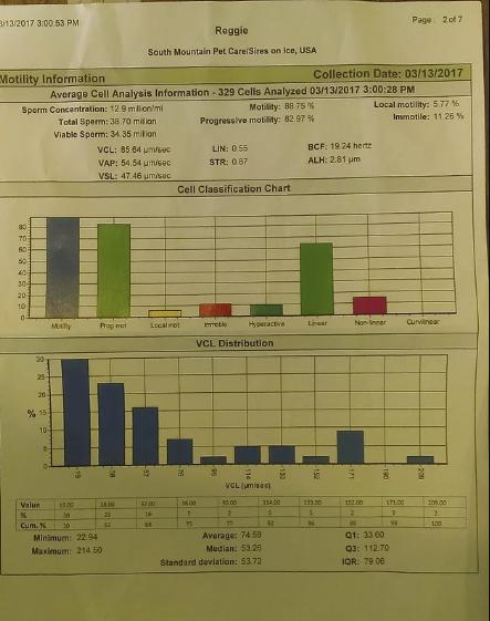 2_reggies charts.png