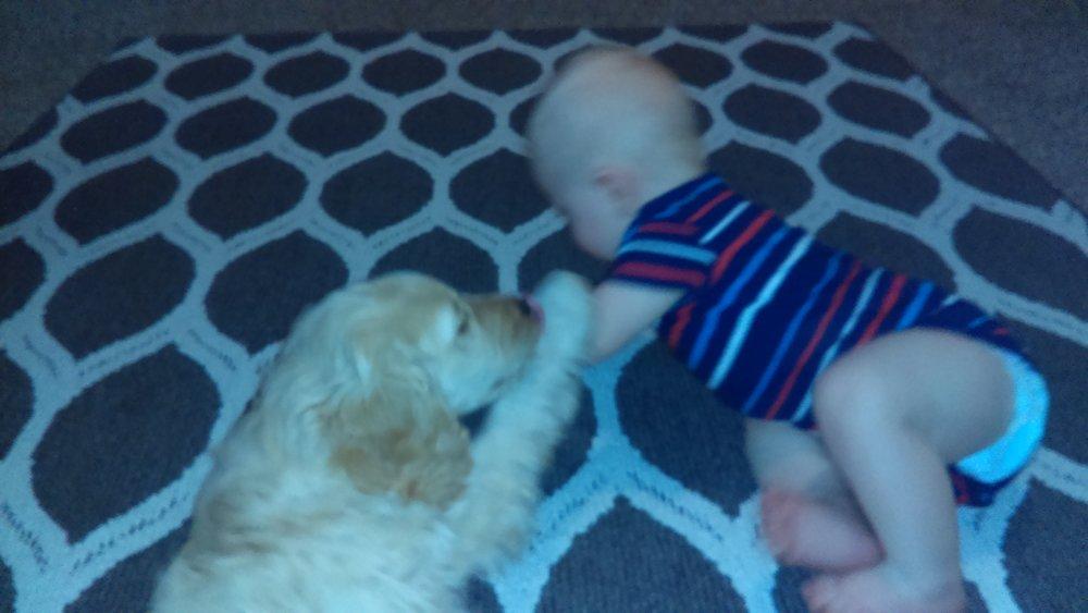 Wrangler and baby.jpg