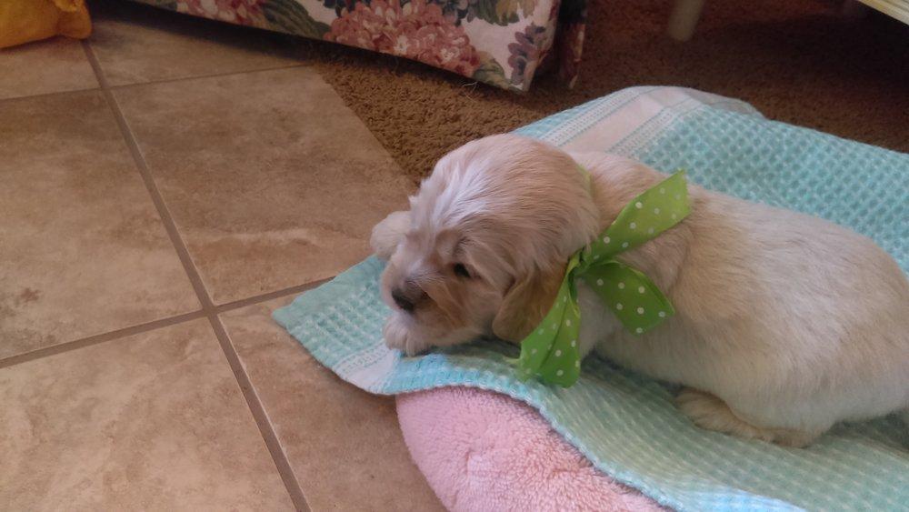 2-weeks-old!