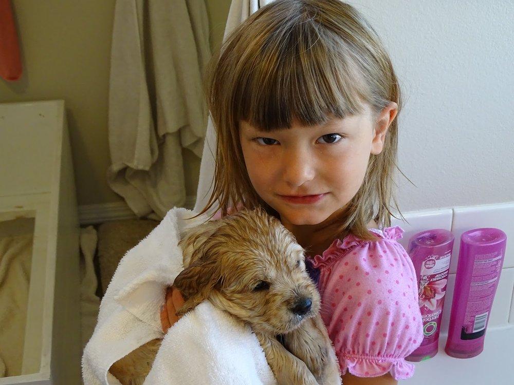 Sweetie Bell's 1st bath