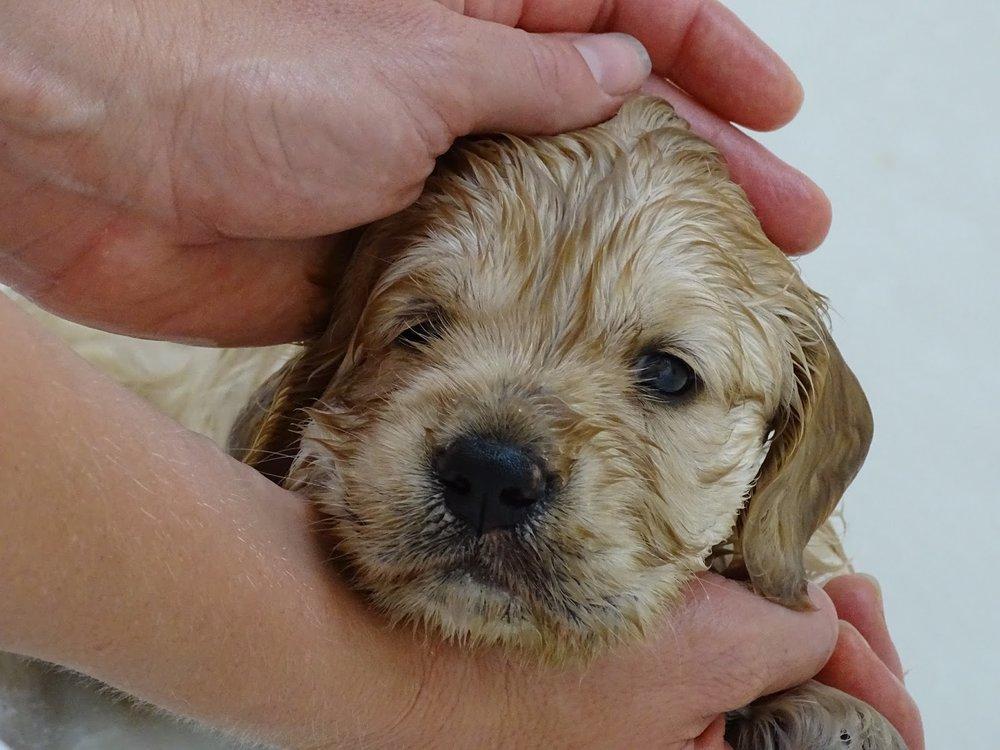 1st bath!!