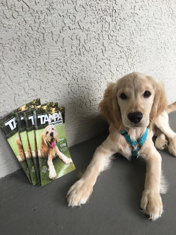 Luca is on the cover of South Tampa Magazine