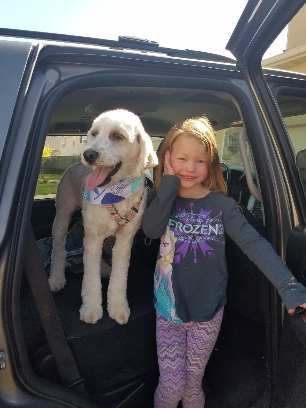 Here is Nala with my little 4-year-old, and she is just getting home from La Petite dog grooming! She has a curly coat so we do have her hair cut every few months but we also like to grow it long and she looks adorable and fluffy like a marshmallow. -