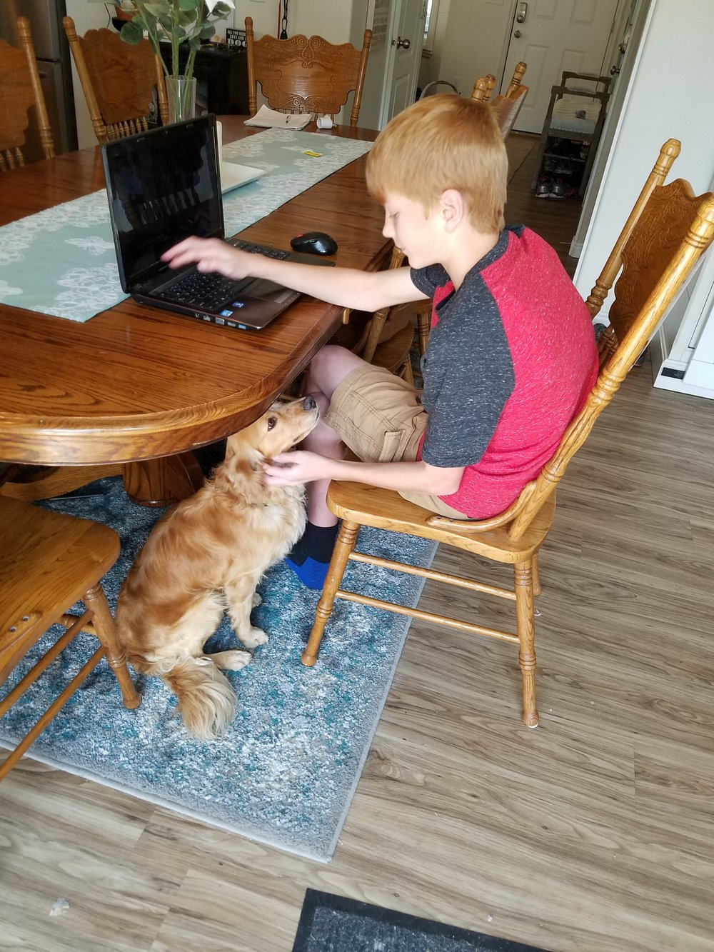 Here is Sullivan looking lovingly at my 13-year-old son. Sully, thank you for loving my children *almost* as much as I do, best dog ever! -