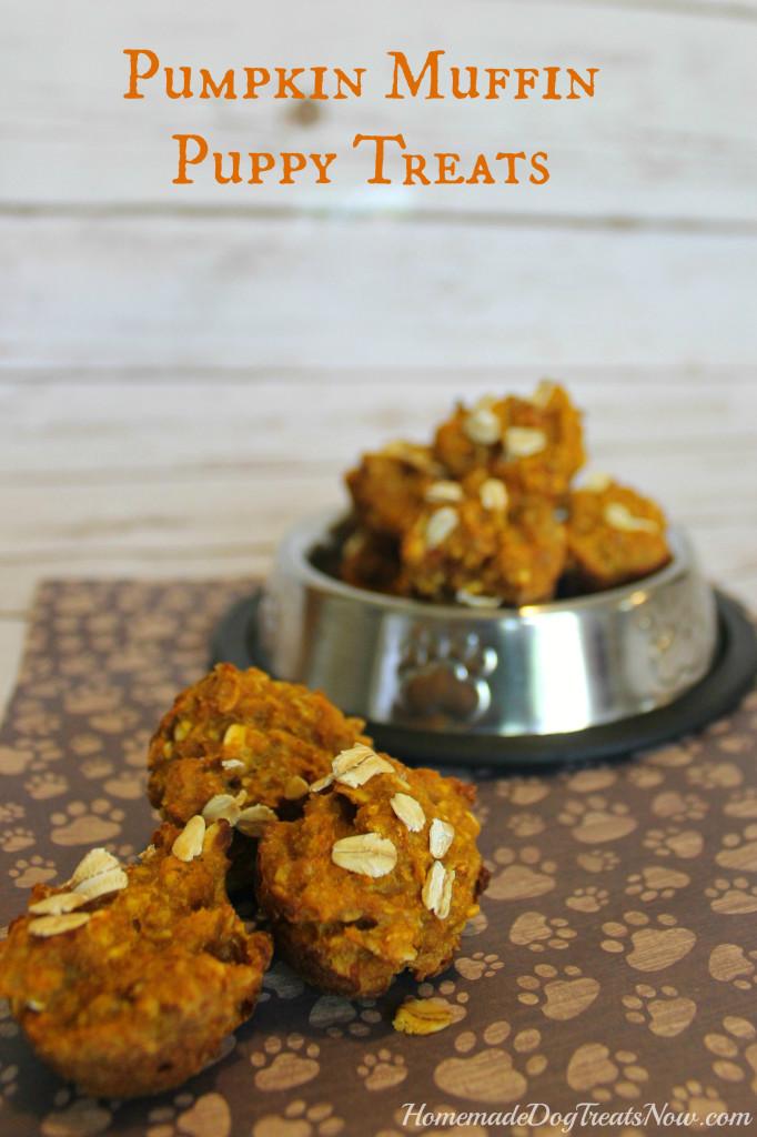 Pumpkin-Puppy-Muffins-682x1024.jpg
