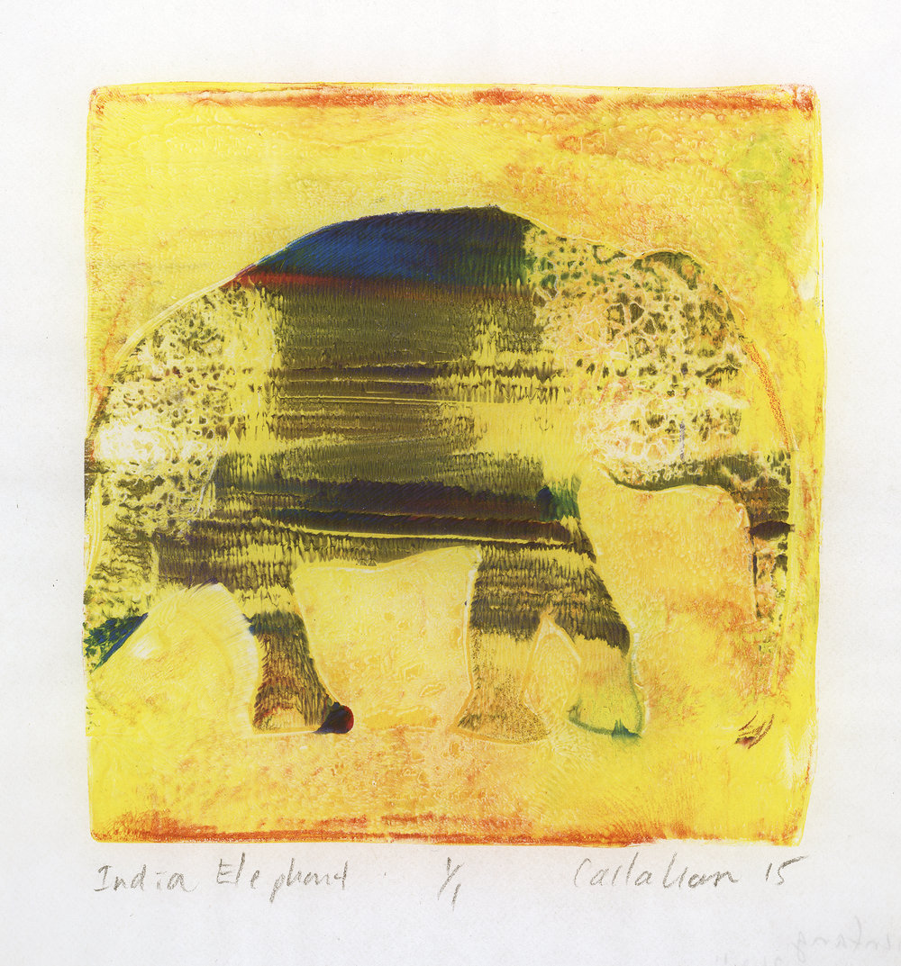 "India Elephant,  2015, monotype, 4"" x 4"""