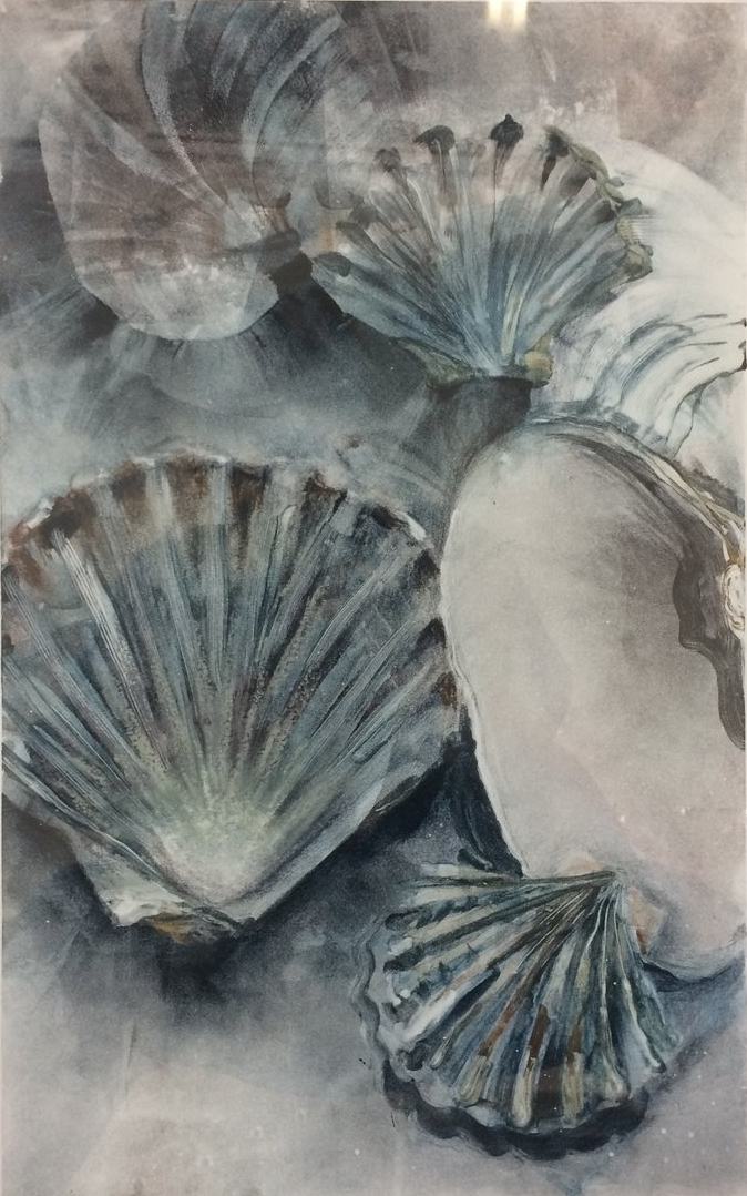 "Clam and Scallop Shells,  2016, monotype, 15"" x 22"""
