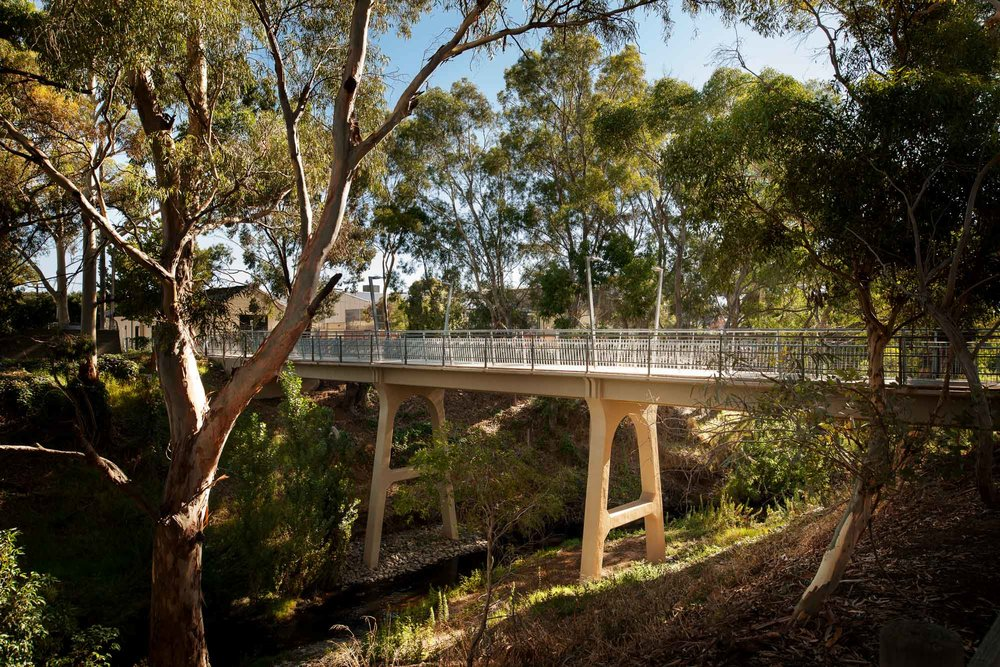 sir william goodman bridge