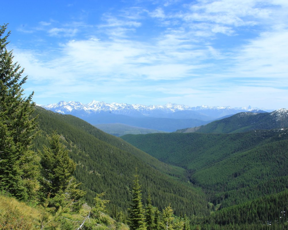 Half-way there. The views from the ridge en route to the Huckleberry Fire Lookout
