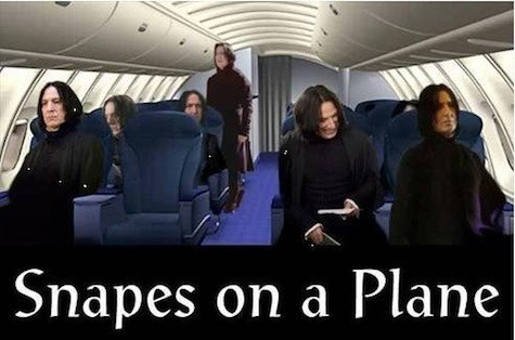 snapes-on-a-plane.jpg