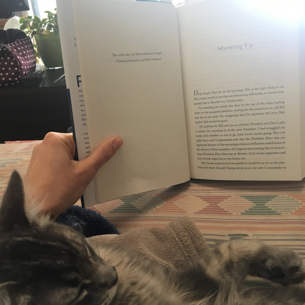 Views from my sick day last week. Nothing but kitten cuddles & a good book...