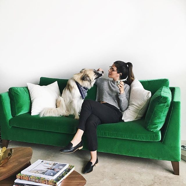 Sunday Plans:  This. (+ prepping all our pieces for the Fall Pop Up 😍) What are you looking forward to today?  @voxland.photo  #📷 @lizwelle . . . #collectivemarketsale #minneapolis #minneapolisfashion #mplsstylist #mplsstyle  #resale #shoplocalmn #upcycle #ecofashion #mnfashion #fwmn #mpls #mnstyle #thoughtfulfashion #popupshop #twincities #minnstafashion #minnstagrammers #stylewithastory #sustainablefashion #fashionrevolution #style #mnevents #exploremn #sundayfunday #velvet #lazysunday #dogsofinstagram #green
