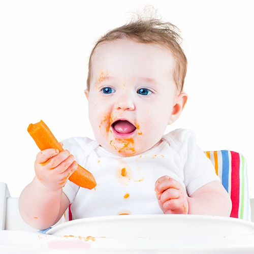 Baby's First Foods