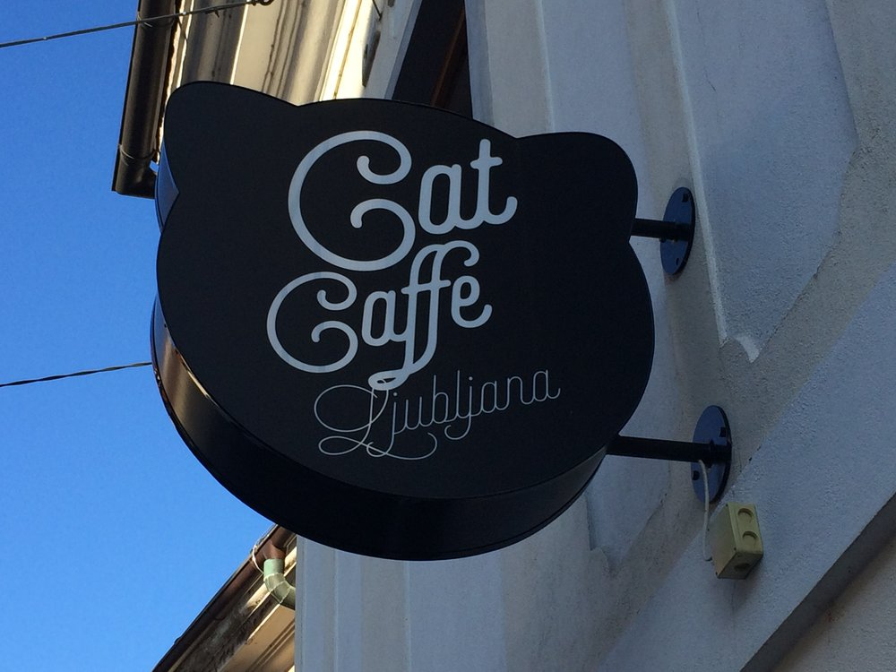Cat Caffe Ljubljana   Ljubljana, Slovenia