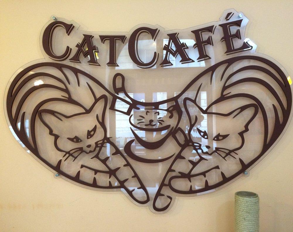 Cat Cafe Budapest   Budapest, Hungary