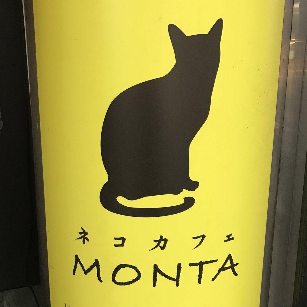 Cat Cafe Monta   Tokyo, Japan