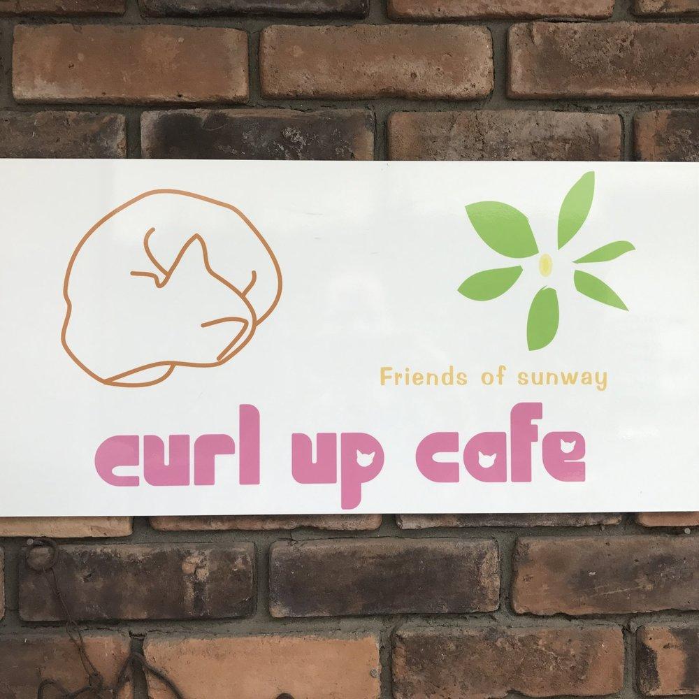 Curl Up Cafe   Tokyo, Japan