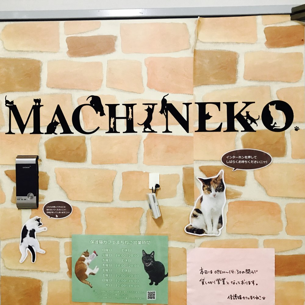 Machineko   Tokyo, Japan