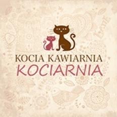 Cat Cafe Kociarnia Lubicz   Krakow, Poland