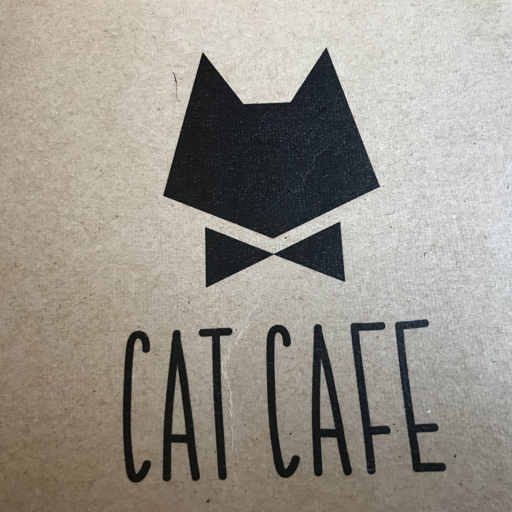 Cat Cafe Vilnius   Vilnius, Lithuania