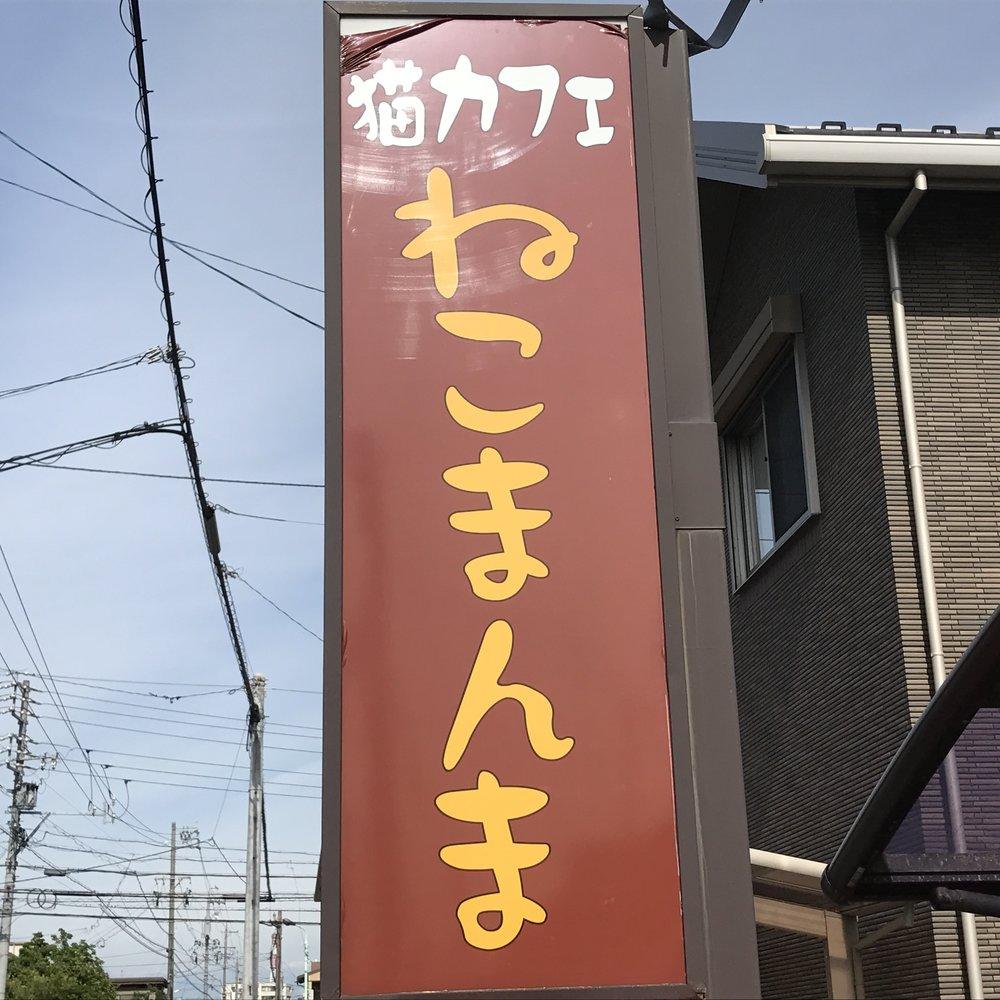 Neko Manma   Nagoya, Japan