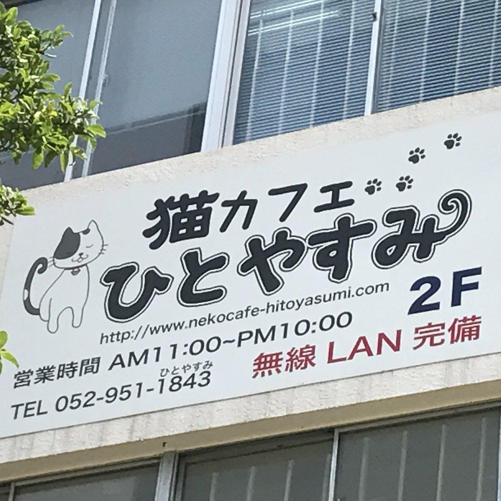 Neko Cafe Hitoyasumi   Nagoya, Japan