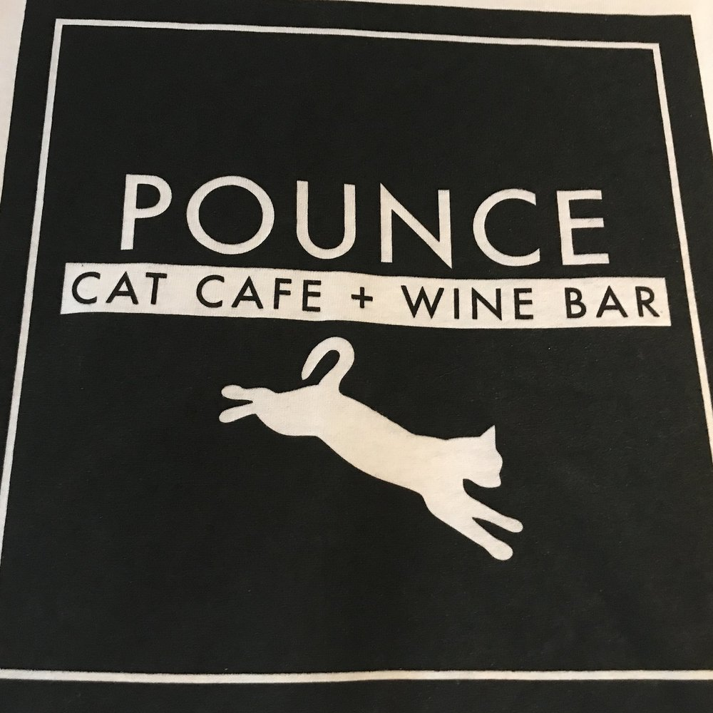 Pounce Cat Cafe   Charleston, SC, USA
