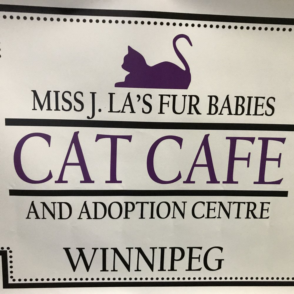 Miss J La's Fur Babies   Winnipeg, MB, Canada