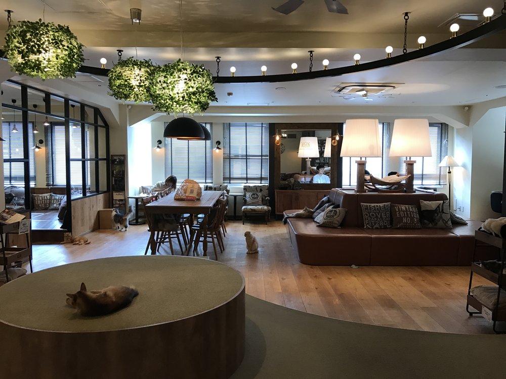 Mocha Lounge Ikebukuro, Tokyo, Japan