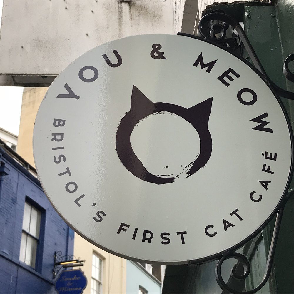 You & Meow   Bristol, UK